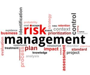 Best Risk Images On   Risk Management Knowledge And