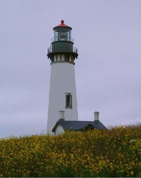 Yaquina Head Lighthouse Photo taken by Lori Curtis  Yaquina Head Lighthouse Newport Lincoln County Oregon Coast