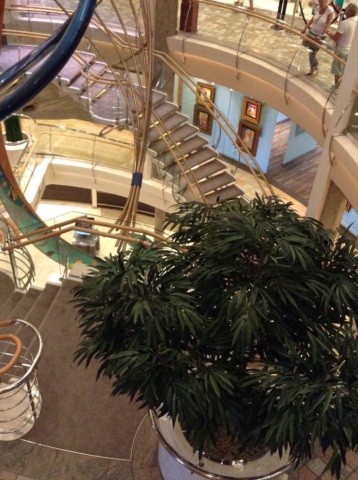 My Holiday on Royal Caribbeans Explorer of the Seas Apr 2015.