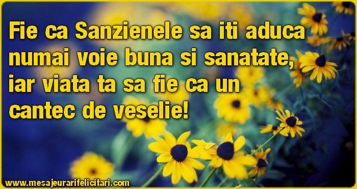 Fie ca Sanzienele sa iti aduca numai voie buna si sanatate, iar viata ta sa fie ca un cantec de veselie!