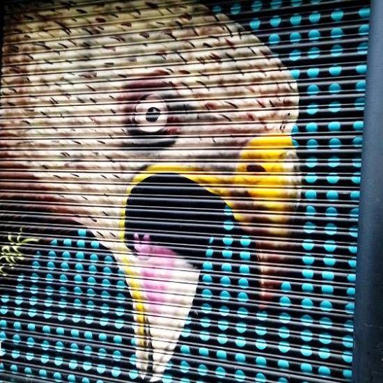 Dublin Street Art #LoveDublin #Bird #Art #Eagle #Paint #Street #Love #Urban