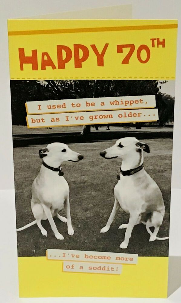 Funny 70th Birthday Card Male Old Dogs 9 X 5 Inches Words And Wishes Wordsandwishes Birthdayadult 70th Birthday Card 70th Birthday Birthday Cards