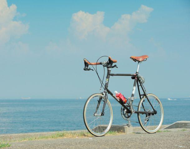 bruno mini bicycle 4