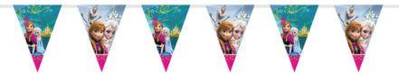 Disney Frozen Triangle Plastic Flag Bunting – 2m