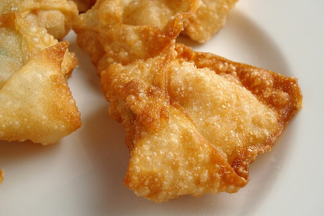 Fried Shrimp Wontons | Also known as sustenance | Pinterest