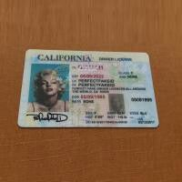 ID, Driver's License, Quality, California, Novelty, Fake, Good, Best, State, Template, CA