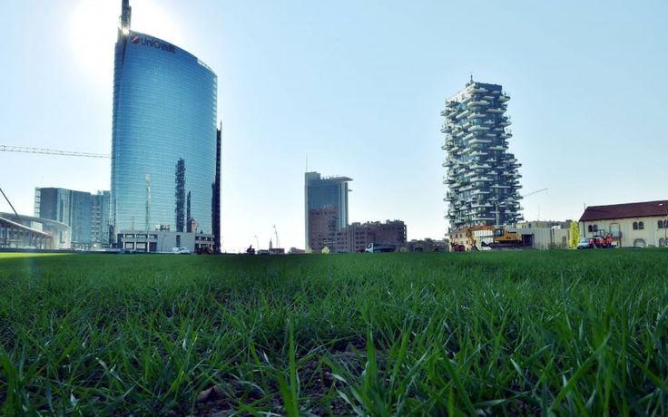 Un enorme campo di grano, di oltre 50 mila metri quadrati, all'ombra dei grattacieli di Garibaldi-Repubblica, con un sentiero sterrato che consente di attraversarlo e godere lo spettacolo di questa opera d'arte ambientale dell'americana Agnes Denes, intitolata  Wheatfield . I cancelli del camp
