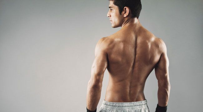 Top 5 Muscle-Building Exercises for the Back ^