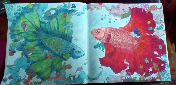 Kerby Rosanes Animorphia Fighting Fish Coloured By Joanne Watts