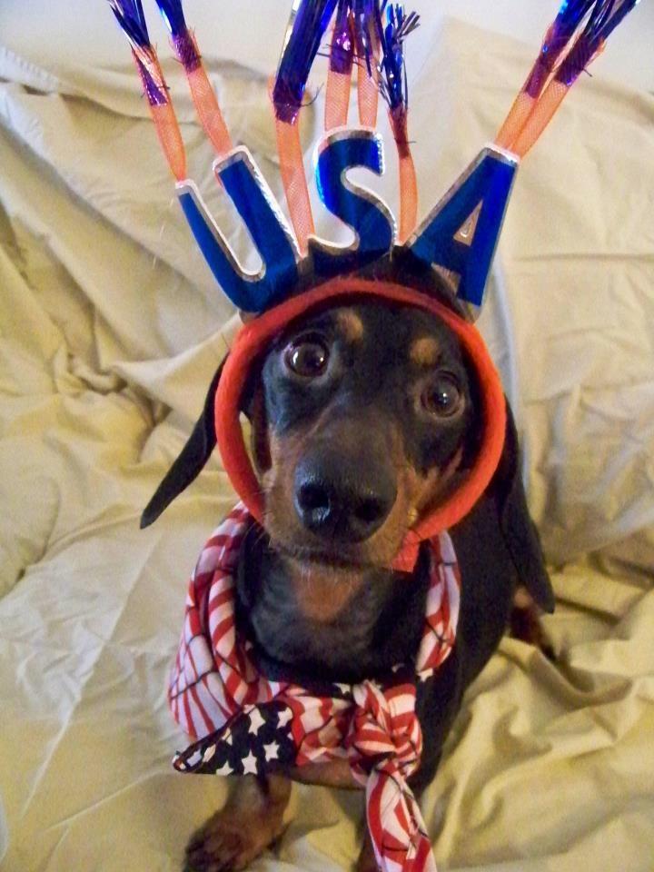Jasper Wishes Everyone A Fun Amp Safe 4th Of July Via I