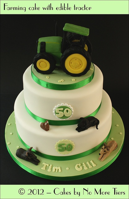 "Green and yellow fondant with blue ""ribbon"". No dogs lol! a teddy bear and tractor."