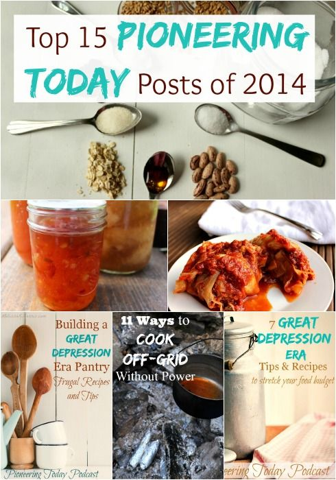 Top 15 Pioneering Today Posts 2014