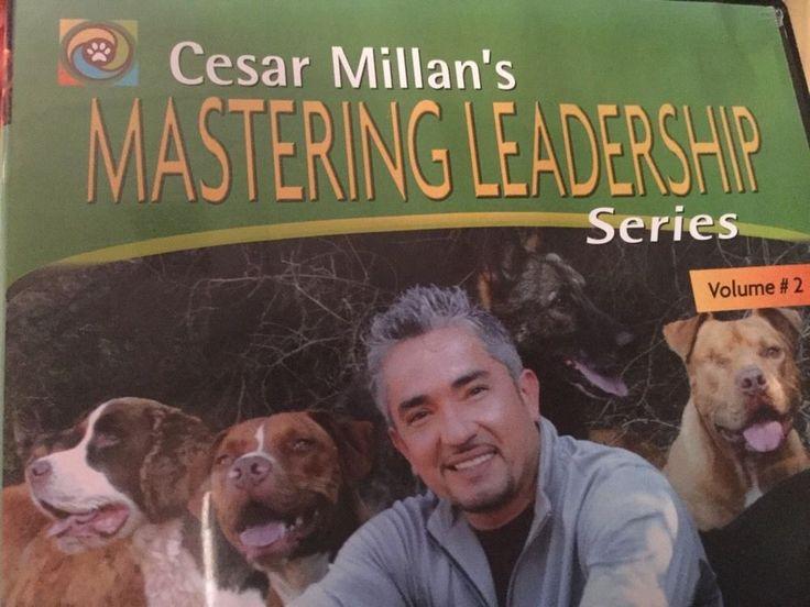 dog whisperer how to raise the perfect dog full episode