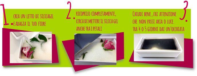 essiccare fiori in tre mosse con il silica gel #silicagel #essiccarefiori #geldisilice #fiori secchi
