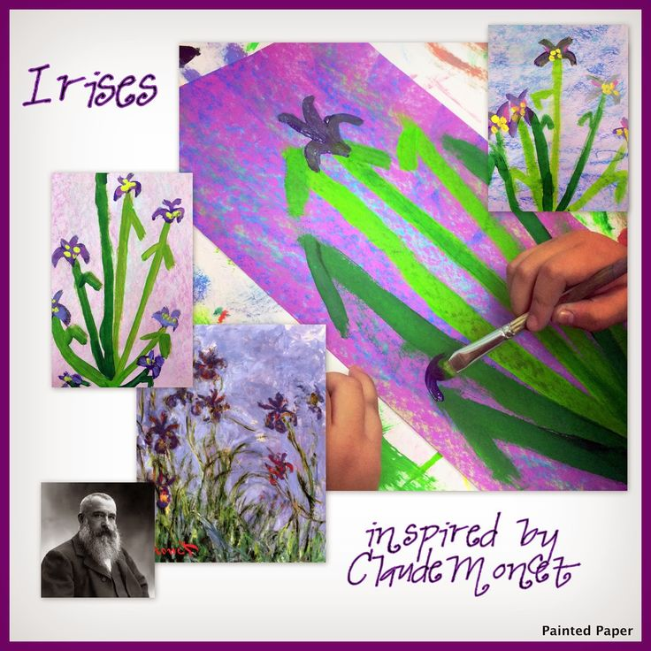irises 1st gr the big draw
