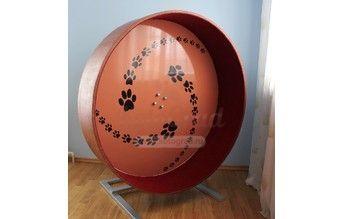 Беговое колесо для кошек Трек   Беговые колеса   - Беговое колесо для кошек Трек   Беговые колеса  
