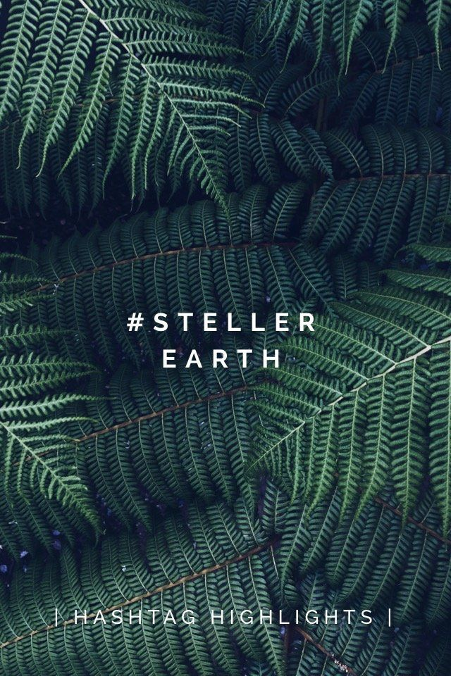 | HASHTAG HIGHLIGHTS | #STELLEREARTH This week, you showed us the earth from incredible new perspectives. In doing so, you reminded us to appreciate and respect our planet not only on April 22, but each and every day. Check out a few of our favorites