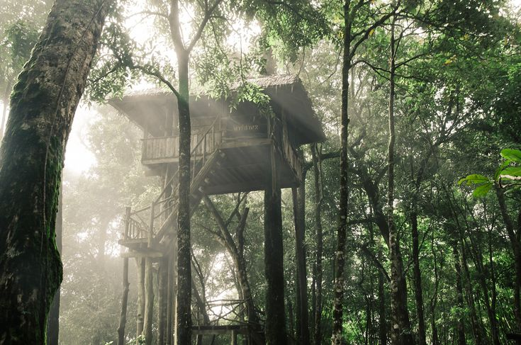Easter holidays UK Treehouse 2 night stay from £109pp - choice of treehouse