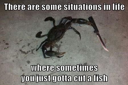 There are some situations in life where sometimes you just gotta cut a fish #humor #funny