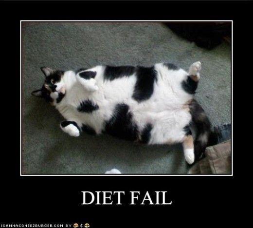 Dieta da seguire con garcinia picture 2