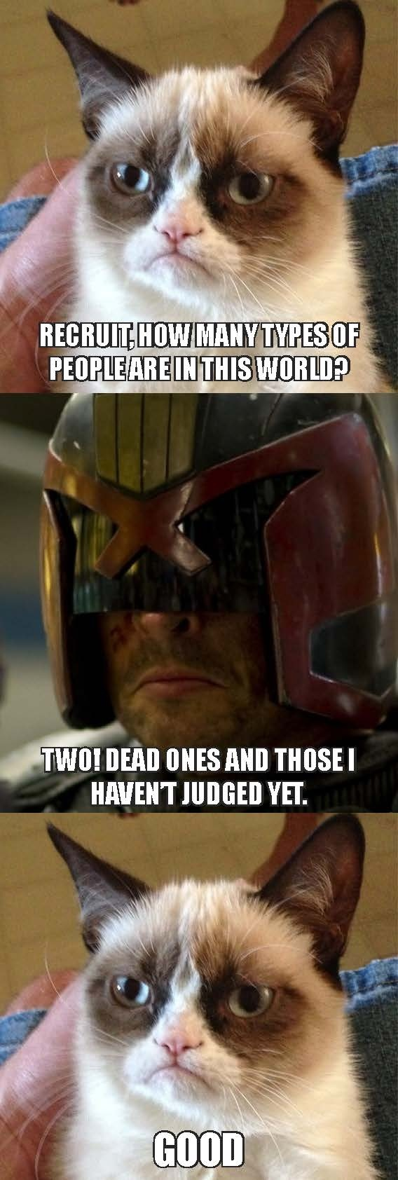 I absolutely loved the new Judge Dredd movie, but got the giggles in between cause he reminded me of Grumpy Cat.