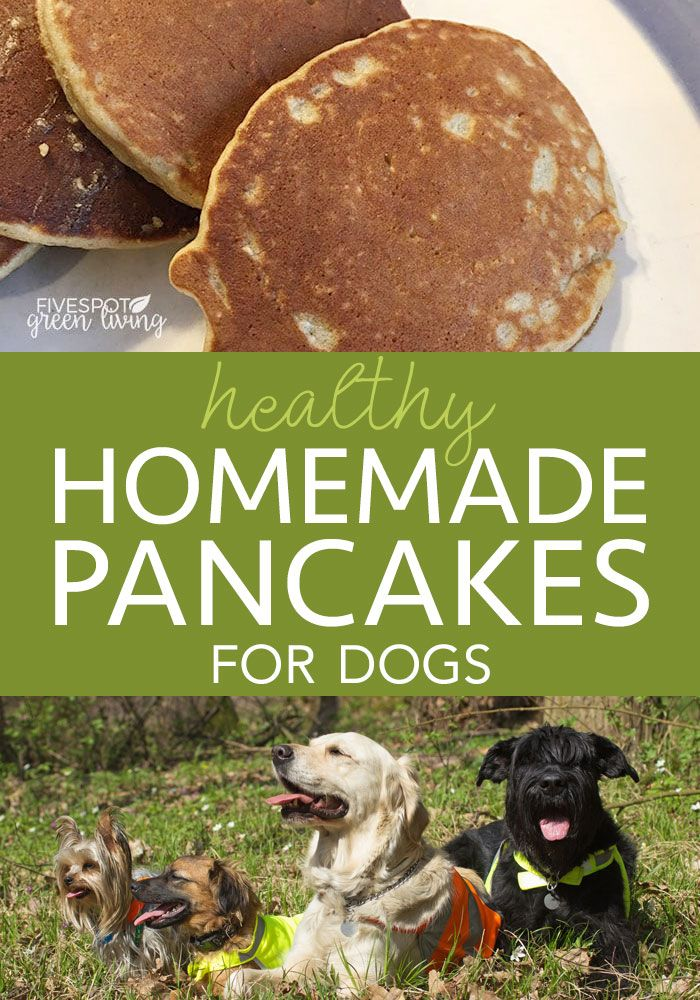 Dogs Recipe Dog Food Recipes Easy Homemade Pancakes Dog Recipes