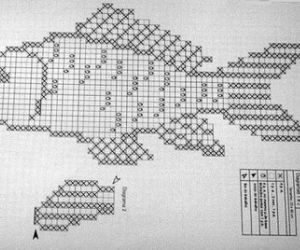 graph for shaped fish