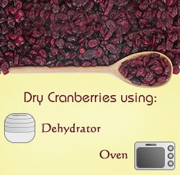 The process of drying cranberries is quite simple and there are not many hassles associated with it. Read this article to gather some knowledge on how to dry cranberries at home...
