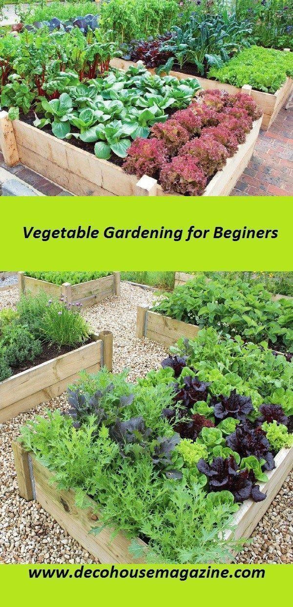 Pin By B Koen On Garden Beds In 2020 Vegetable Garden For