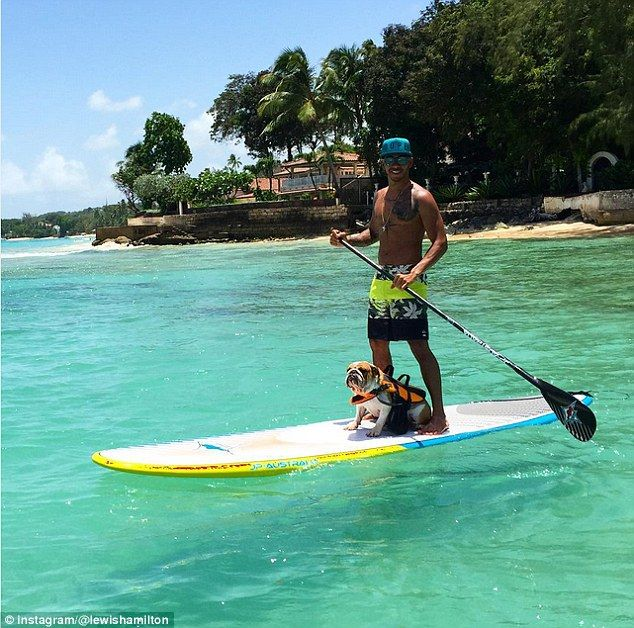 Lewis Hamilton enjoys a day paddle boarding with his two-year-old pup Coco after partying with Rihanna