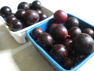 Slow-Cooker Muscadine Grape Jam (sugar-free, vegan)