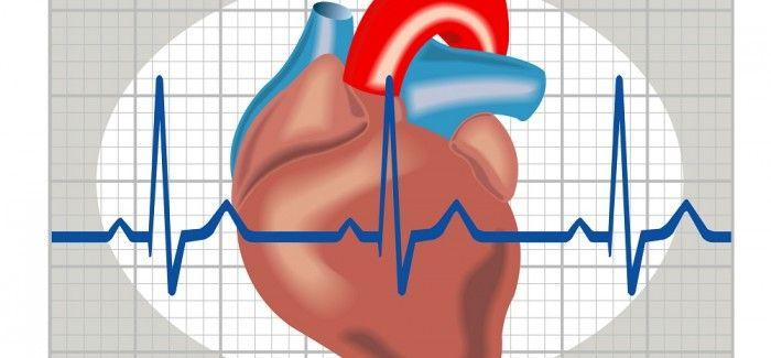 La tachycardie (ou les palpitations) est une accélération du rythme cardiaque. Les battements du coeur, oscillant normalement entre 60 et 100 pulsations par minute, dépassent alors les 100 pulsations. Dans de nombreux cas, cela peut affecter la santé et être très dangereux. Voilà pourquoi il convient de la connaître et de prendre des mesures naturelles pour la prévenir.
