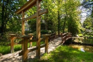 Manor park in Iłowa, south-western Poland. Garden art - oriental gardens.