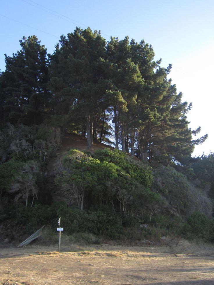 Pelluhue, Cauquenes, Chile