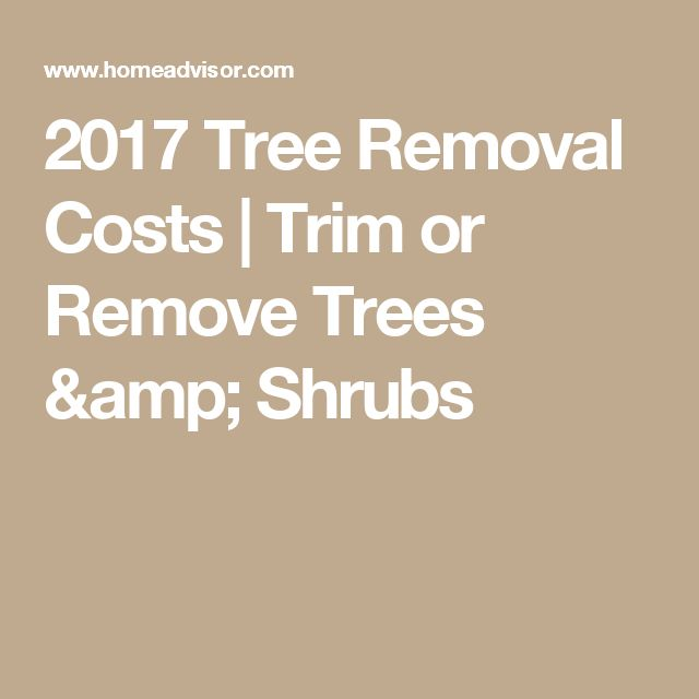 2017 Tree Removal Costs | Trim or Remove Trees & Shrubs
