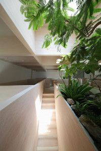 Katsutoshi Sasaki + Associates Designs Minimal Japanese Home With Lush Greenery homesthetics architecture (13)