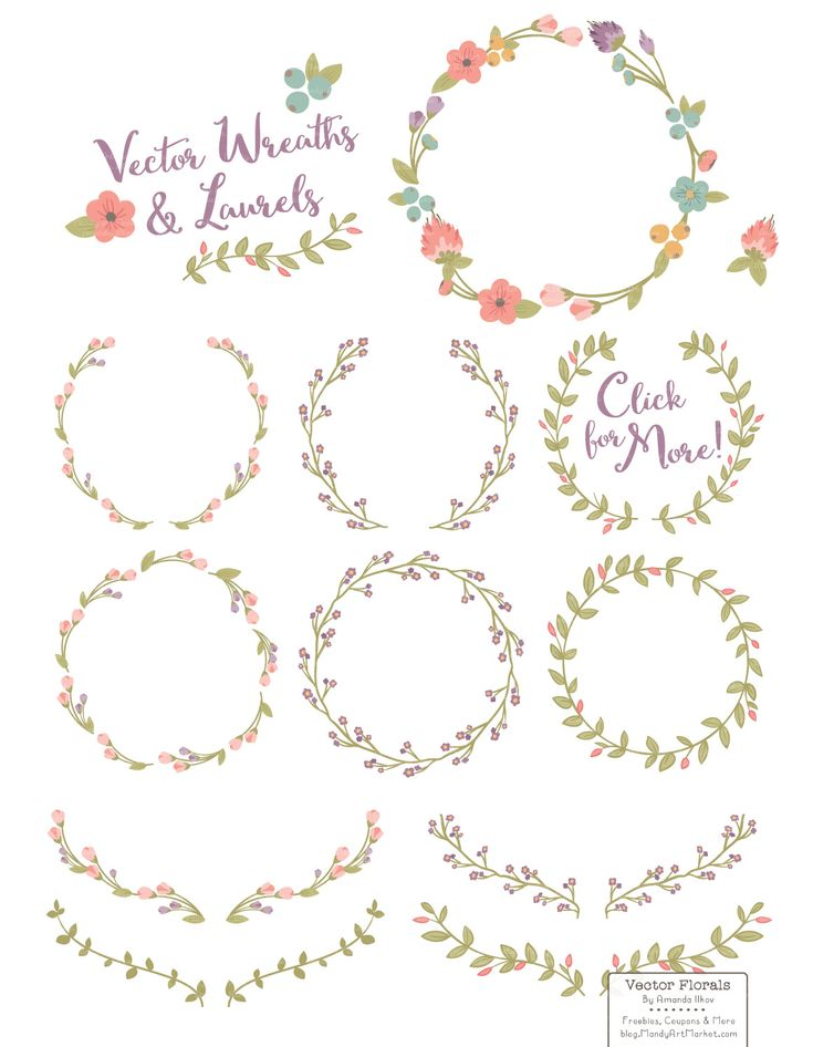 Vintage Vector Flower Wreaths by Amanda Ilkov on @creativemarket
