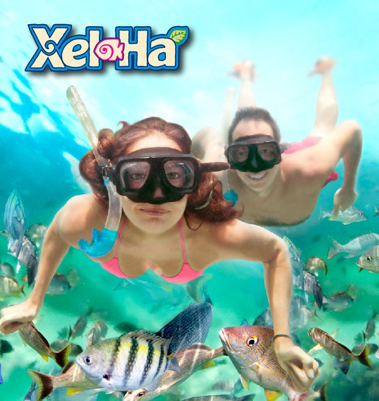Best Places To Visit In Goa Lonely Planet: Playa Del Carmen, Playa