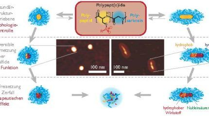 New Method Produces Precise Polymeric Nanoparticles for Clinical Applicability