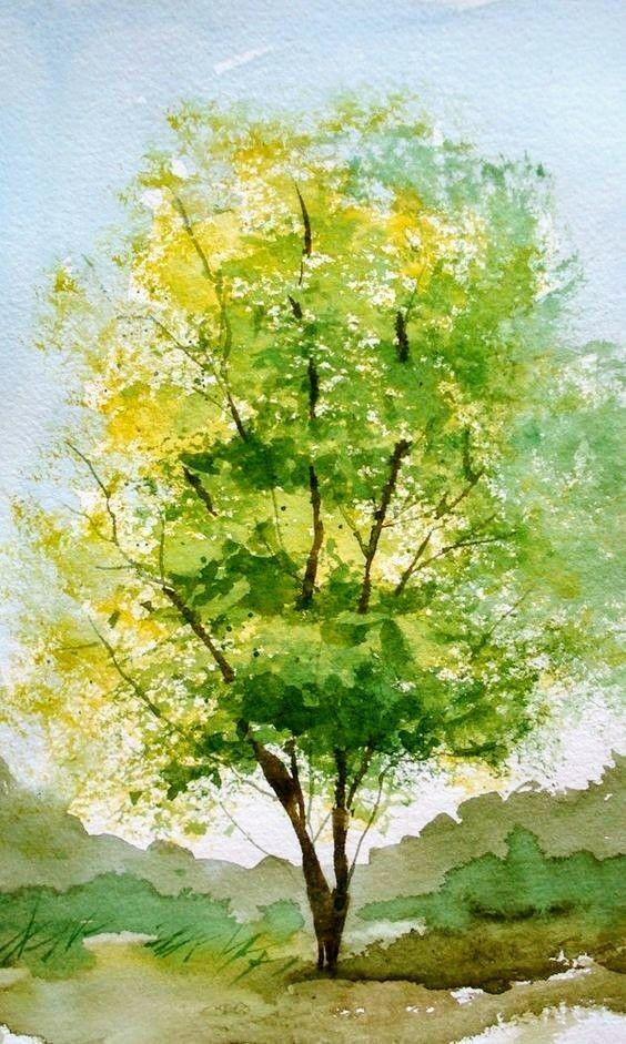 Water drawing: Oak tree