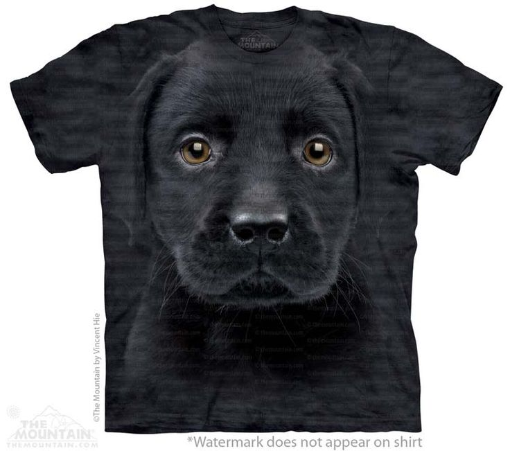 Labrador Puppy T-Shirt - Click image to see hundreds of different animal t-shirts #themountaintees