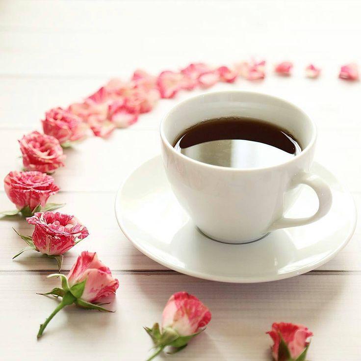 фото красивое утро счастья и любви цвета капучино