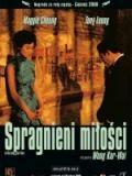 Spragnieni miłości / Fa yeung nin wa (2000)