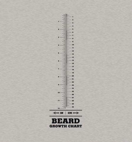 Beard Ruler Shirt - $20