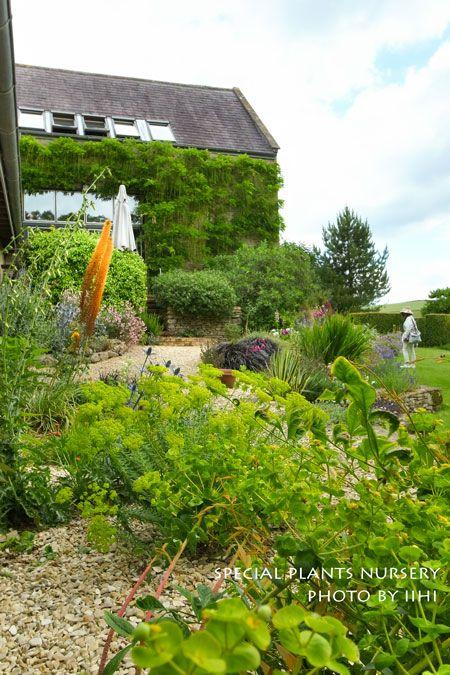 7 best olive garden images on Pinterest | Olive gardens, Little ...