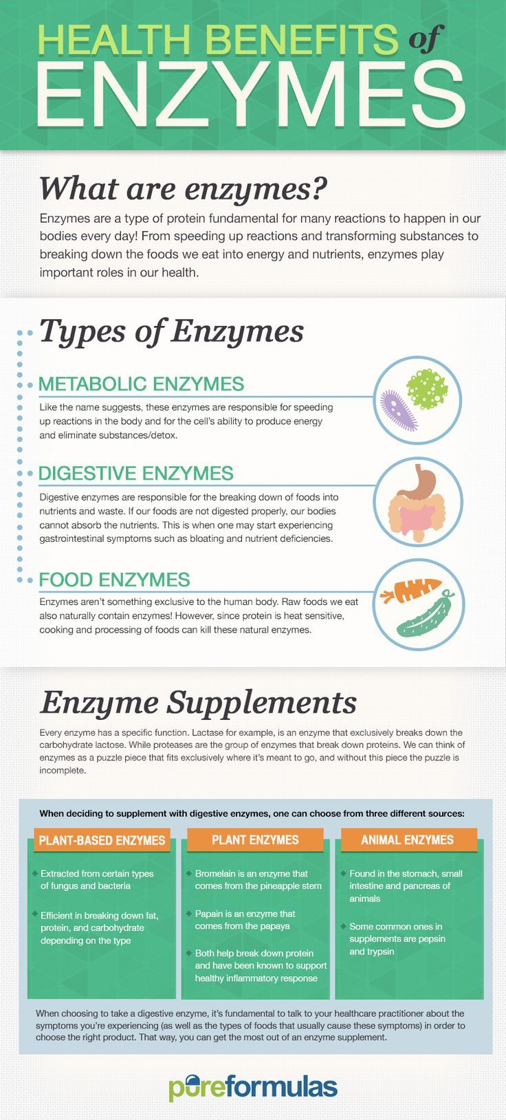 Health Benefits of Enzymes