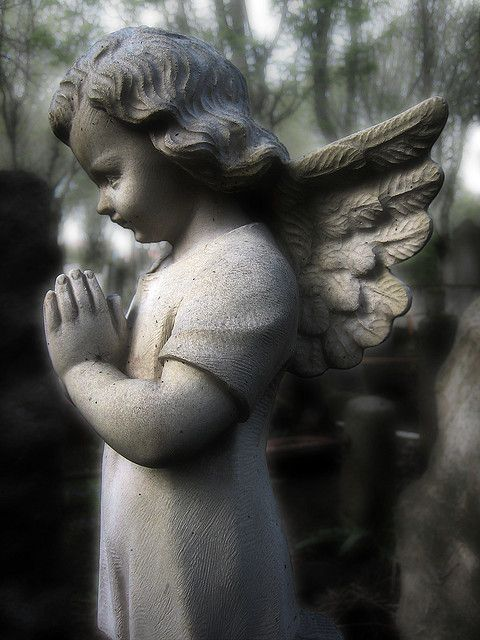 Be not forgetful to entertain strangers: for thereby some have entertained angels unawares .