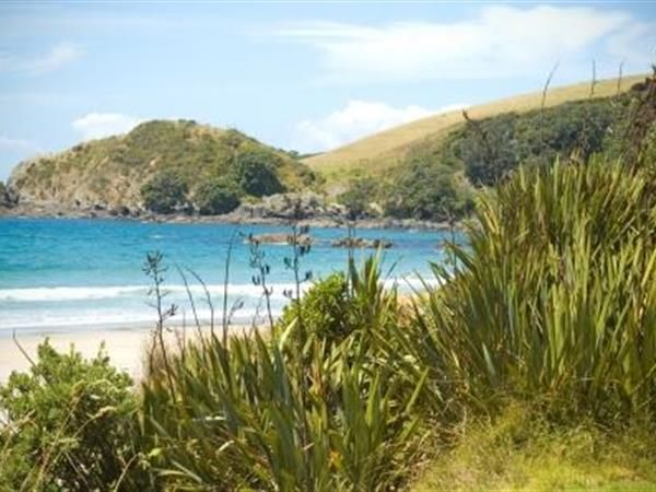 Auckland to Matakana Private Luxury Tours TIME Unlimited Tours