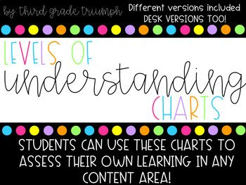 Levels of Understanding Posters by Third Grade Triumph | TpT