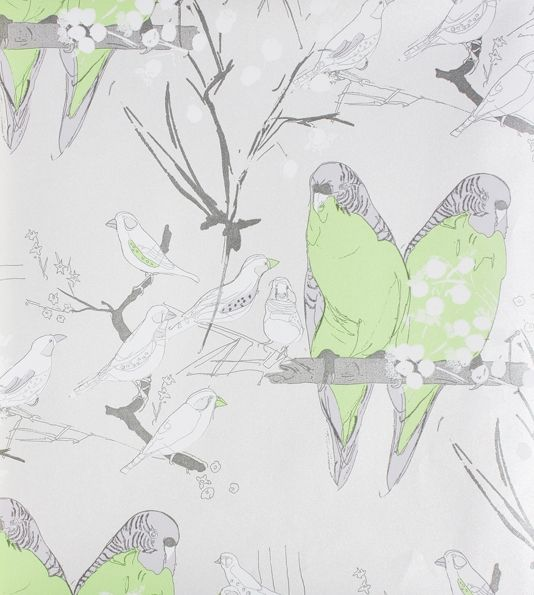 Budgie Wallpaper A lovely wallpaper with drawings of perched Budgies in lime green and grey on a silver mica paper.